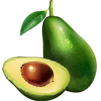 Gelato Gusti Avocado