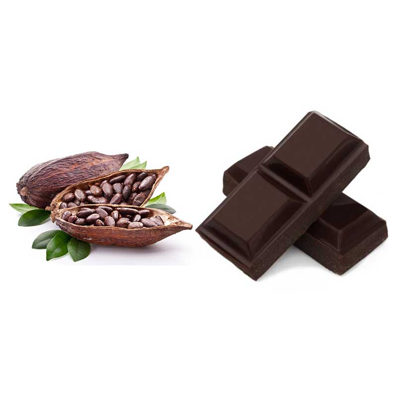 Gelato Gusti Cacao