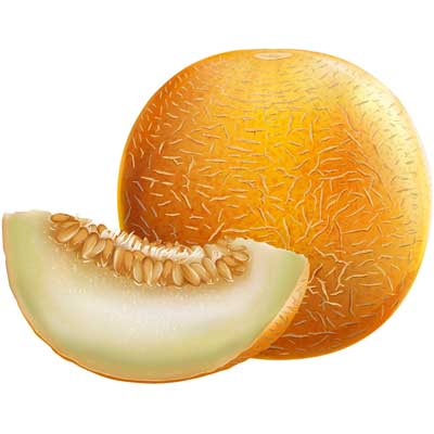 Gelato Gusti Melone